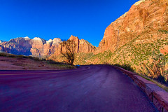 Route 9 @ Zion National Park (www.worldofraees.com) Tags: road morning sunset museum composition sunrise work lens wonder point known golden others couple shoot shot angle stuck main towers wide lot places center location best used virgin whole telephoto photograph hour short area zion behind commonly written visitor description obvious recently able