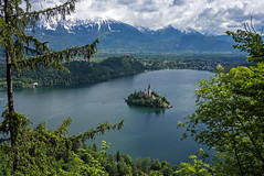 Ein bisschen Grn tut gut (Renate Dodell) Tags: schnee cloud mountain lake snow green church berg forest landscape island see kirche wolke insel slovenia bled slowenien grn landschaft wald 2013 bledersee dorenawm nex7 renatedodell