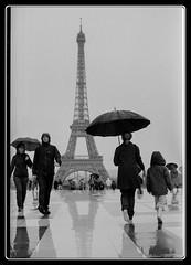 Paris_Street (Maestr!0_0!) Tags: street leica white black paris tower rain 50mm noir tour pluie eiffel rainy rue blanc m2