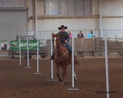 Bar None Jr Rodeo (Garagewerks) Tags: boy horse male sport youth bar cowboy all none sony sigma indoor jr pole arena rodeo poles cowgirl athlete f28 equine bending 70200mm 2875mm views100 views200 slta77v slta65v