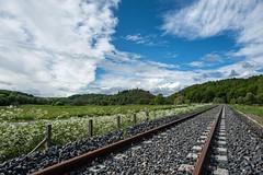 voie (bernard63000) Tags: nature train transport rail campagne église auvergne ballast puydedôme chemindefer combrailles pontgibaud d700 1424mm saintpierrelechastel