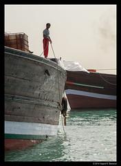 Working at a dhow in the Dubai Creek (vegarste) Tags: old man water creek work boat nikon dubai uae january middleeast rope arabic worker arabian unitedarabemirates dhow d800