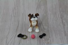 He's my puppy! (Reallusion) Tags: dog animal cookie canine bulldog le miel bjd aladdin fairyland mystic ante latidoll lati latiyellow pharaohscurse daisydayes pukifee