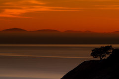 Sunset Solitude (markvcr) Tags: ocean sunset sea orange canada tree water rock night vancouver island bc cloudy abigfave coth5