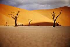 L1030573m (christophe carlier) Tags: leica 50mm desert f14 voigtlander ngc m8 12 40mm aus sesriem namibia 15mm nokton m9 sossusvlei namib spitzkoppe deadvlei namibie m82 kolmanskop nationalgeographicchannel namibnaukluftpark mmount canon50mmf12ltm m9p