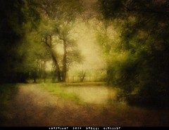 The Poetry of Nature (Gislaadt Art - huge CFIDS crisis) Tags: green art texture nature poetry poem vert