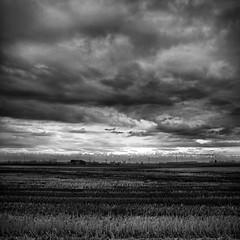 ... laggiù se si guarda bene c'è  Violetta ... (UBU ♛) Tags: blancoynegro blackwhite noiretblanc blues dreams biancoenero violetta blunotte blureale ©ubu blutristezza unamusicaintesta landscapeinblues bluubu luciombreepiccolicristalli