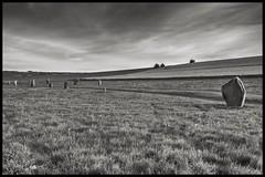 Avebury (Evoljo) Tags: blackwhite ancient nikon stones explore wiltshire avebury d7100