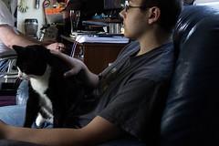 IMG_2069 (Jenn ) Tags: cat felix brother rescuecat formerstray fiv fivcat fivpositive fivawareness