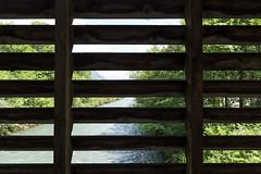 Selgisbrücke (qitsuk) Tags: schweiz switzerland coveredbridge schwyz muotathal woodenbrigde muota selgisbrücke