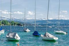 Zürich Lake, Swiss (SG.NikonD7000) Tags: mountain lake daylight nikon natural swiss zurich sharp glacier zürich 70300mm tamron vc 70300 7k d7k d7000 nikond7000 iamnikon