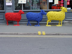 Tour sheep (Nekoglyph) Tags: road street blue red sport yellow shop cycling sheep pavement yorkshire whitby publicart colourful sculptures doubleyellowlines commemoration tourdefrance2014