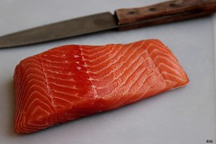 Fresh Salmon piece (hotel82) Tags: fish salmon fresh seafood pescado poisson fresco lachs