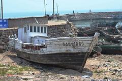 shipwrecked (audreywang929) Tags: china old blue fishing nikon ship fishermen shipwreck qingdao