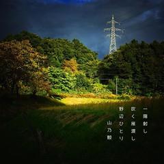 ()    #photoikku #haiku #jhaiku #autumn #snapseed # #photohaiku #japan #poetry # (Atsushi Boulder) Tags: instagramapp square squareformat iphoneography uploaded:by=instagram snapseed photoikku haiku    poem poetry verse  autumn fall