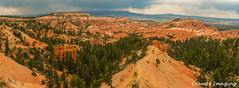 Below Sunrise Point (Cramer Imaging) Tags: outdoor outdoors nature natural landscape scenic nationalpark park national brycecanyon brycecanyonnationalpark utah americansouthwest red tree rock rocks trees rockformation canyon storm sky cloud clouds sunrisepoint sunrise point panorama