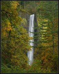 Latourell Falls (Ernie Misner) Tags: waterfall falls columbiagorge oregon lateroullfalls lateroull erniemisner nikon nik capturenx2 cnx2 hoyahd3polarizer f8andbenearthefalls