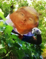 trumpty dumpty sat on a wall... (Bill Sargent) Tags: trump humpty dumpty trumpty lewis carroll us presidential election