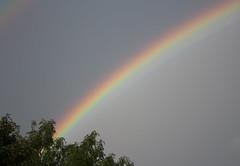 Somewhere... (ArtGordon1) Tags: rainbow weather prism walthamstow london england uk e17 davegordon davidgordon daveartgordon davidagordon daveagordon artgordon1 october 2016 sky