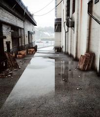 GTA5 (araik_kratos) Tags: game reflections gta5 rain raindrops