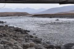 MAQ_0440 (MolviDSLR) Tags: deosair national park skardu gilgit baltistan northern areas pakistan brown bear wild life scenery landscape