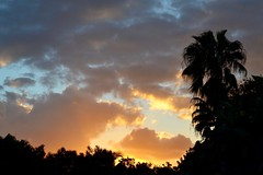 Sunset in Miami (bmasdeu) Tags: sky clouds sunset miami florida tropical paradise