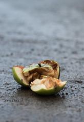 Apfel (ShrixArt) Tags: apfel herbst natur