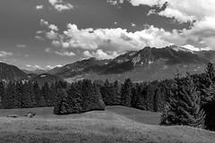 Talblick von der Alpe Dornach (SW) (Bluespete) Tags: 32143153 6322425 allgu alpedornach bw bluespete d7100 fc germany nikon oberstdorf psi petersieling sw schwarzweiss tiefenbach