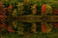 The Other Side (SunnyDazzled) Tags: lake kanawauke reflections trees autumn fall foliage leaves colorful mirror harriman statepark newyork shore landscape water forest