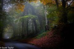 Autumn Mist (Scrufftie) Tags: countryside buckinghamshire landscape handheld autumn canonef1635mmf4lisusm canon chilterns photoshopcc canon5dsr