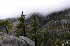 Fog (erinwolf1997) Tags: laketahoe southlaketahoe trees pines clouds white rocks california mountains green nature