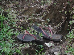 A Pair of Broken Thongs (mikecogh) Tags: apia samoa thongs lost discarded pair rubbish broken