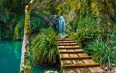 Puente del Mol (carlosmotje) Tags: cascadas waterfalls verde largaexposicin gorg seda efecto composicin