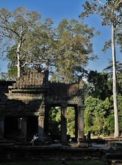taking it all in (SM Tham) Tags: asia cambodia angkor unescoworldheritagesite preahkhan khmer stone temple architecture columns colonnade shade tourists trees sky outdoors