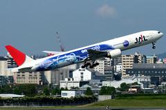 Japan Airlines | Boeing 777-300 | JA8941 | oneworld livery | Osaka Itami (Dennis HKG) Tags: jal jl japanairlines boeing 777 777300 boeing777 boeing777300 aircraft airplane airport plane planespotting osaka itami rjoo itm ja8941 oneworld canon 30d 100400