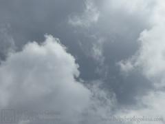 Partly Cloudy (byGabrieleGolissa) Tags: fineartphotography kunstfotografie kunstphotographie fotokunst photokunst foto fotografie fotographie handsigned himmel photo wolken clouds handsigniert limitededition limitierteauflage numbered nummeriert photography skies sky grey white grau weis