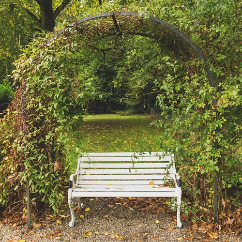 Autumn Elegance Lovely white bench framed by beautiful autumn colours. Working lots and no time for photo's, so editing over some previous photos. ☺👍 #haddohouse #haddogardens #bench #white #autumn #leaves #autumncolors #nature #textures #aberdee