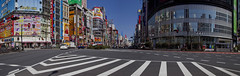 Tokyo 4074 (tokyoform) Tags: tokyo tokio  japo japn giappone nhtbn tquio           chrisjongkind tokyoform canon 6d street  calle rue strase  canyon crowd  foule  shinjuku kabukicho  signs