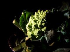 2555coledit (dawn_macroart) Tags: organic calbrese fractals still life northen european renaissance inspired juansánchezcotán colour textures mathamatics reflections blackbackground arty waterdrioplets
