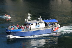 Tourist Boat in the Trollfjord, Norway (1) (Phil Masters) Tags: 21stjuly july2016 norwayholiday norway raftsund raftsundet thetrollfjord trollfjorden trollfjord shipsandboats tourists
