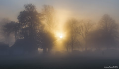 Fog on the Downs (zolaczakl ( 2.5 million views, thanks everyone)) Tags: bristol thedowns fog trees cars parkland park openspace december 2016 photographybyjeremyfennell nikond7100 nikonafsnikkor24120mmf4gedvrlens uk england southwest buildings