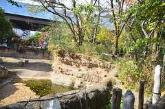 WKK_0532 (kongkham35@hotmail.com) Tags: tennojizoo nikond7000 nikon1685 osaka japan
