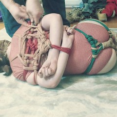 When the newest Victorias secret is too restrictive #rope #bondage #kink #kinbaku #kinbakuart #shibari #rope #ropeart #fetish #tk #hipharness (methcrab) Tags: instagram kink bdsm fetish littledragonworks when newest victorias secret is too restrictive rope bondage kinbaku kinbakuart shibari ropeart tk hipharness