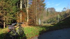 Mondsee, Irrsee, Wallersee (twinni) Tags: mw1504 18112016 bike biketour salzburg obersterreich sterreich austria felt qx100 trekkingbike trekkingbiketour fahrrad fahrradrunde fahrradtour garmin oregon 700