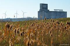 Outer Harbor (gregador) Tags: lackawanna ny outerharbor windfarm grainelevator cargillpool tifftnaturepreserve