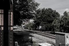Vias en la ciudad (Dawlad Ast) Tags: estados unidos america florida tampa centro ybor eeuu usa septiembre september 2016 united states ciudad city via tren ferrocarril railroad
