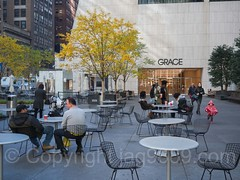 POPS077: Public Plaza, 1114 Avenue of the Americas Grace Building, Midtown Manhattan, New York City (jag9889) Tags: gracebuilding jag9889 20161119 midtownnorth foliage manhattan midtown newyorkcity pops newyork outdoor 2016 publicplaza 1114sixthavenue usa autumn colors fall landscape ny nyc popos privatelyownedpublicspace publicspace unitedstates unitedstatesofamerica us