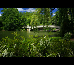 That old Central Park again ... (max tuta noronha) Tags: summer max verde green primavera spring centralpark central bowbridge verao