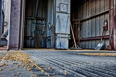 The Pit (StevanBaird) Tags: fall corn farm elevator harvest pit case combine soybeans brooms ih grainbin augerwagon