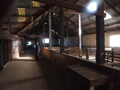 Inside Boolcoomatta Woolshed (Light's_[di]vision) Tags: heritage bush phil south reserve australia woolshed bagust boolcoomatta